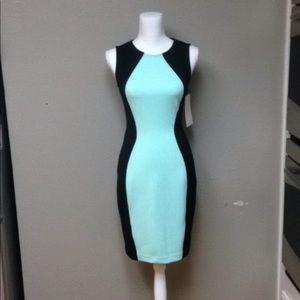 Color Block Scuba Dress